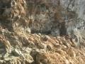 CASTRO-LE GROTTE VISTE DAL MARE-LA PALUMMARA