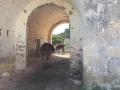 MASSERIA CRANNE-NEI PRESSI DI PORTO BADISCO