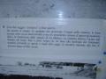 1 -Tomba ipogea - alcune informazioni- FOTO NEL BAR DA CARLO (5)